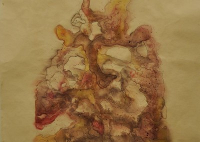 burns, sarah. guts. watercolor ink and pastel on paper. 16in w. x 21in h.