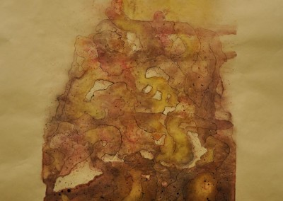 burns, sarah. guts1. watercolor ink and pastel on paper. 16in w. x 21in h.